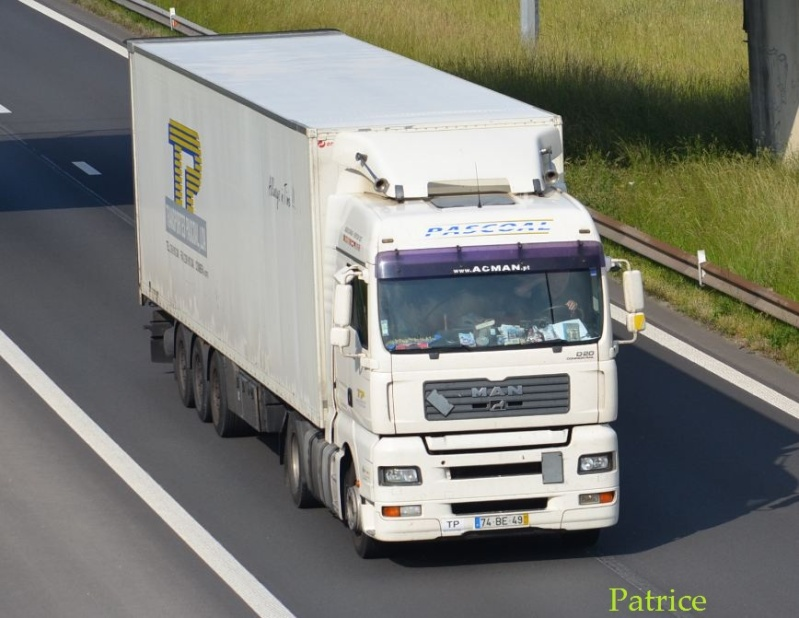 Transportes Pascoal - Page 2 243pp10