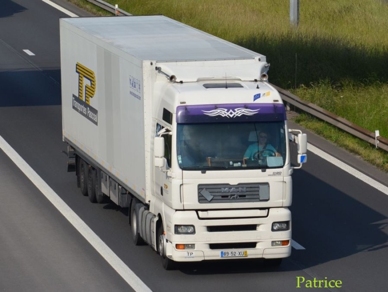 Transportes Pascoal - Page 2 279pp12