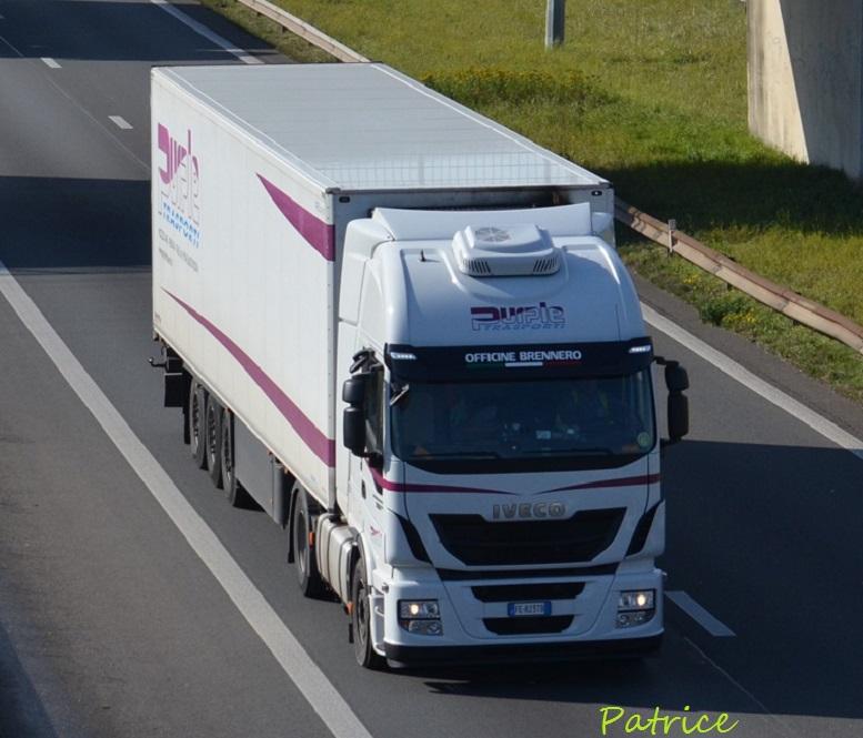 Purple Trasporti (Mozzecane) 4511