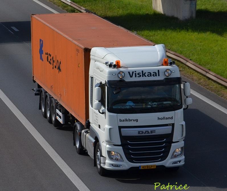 Viskaal (Balkbrug) 7710