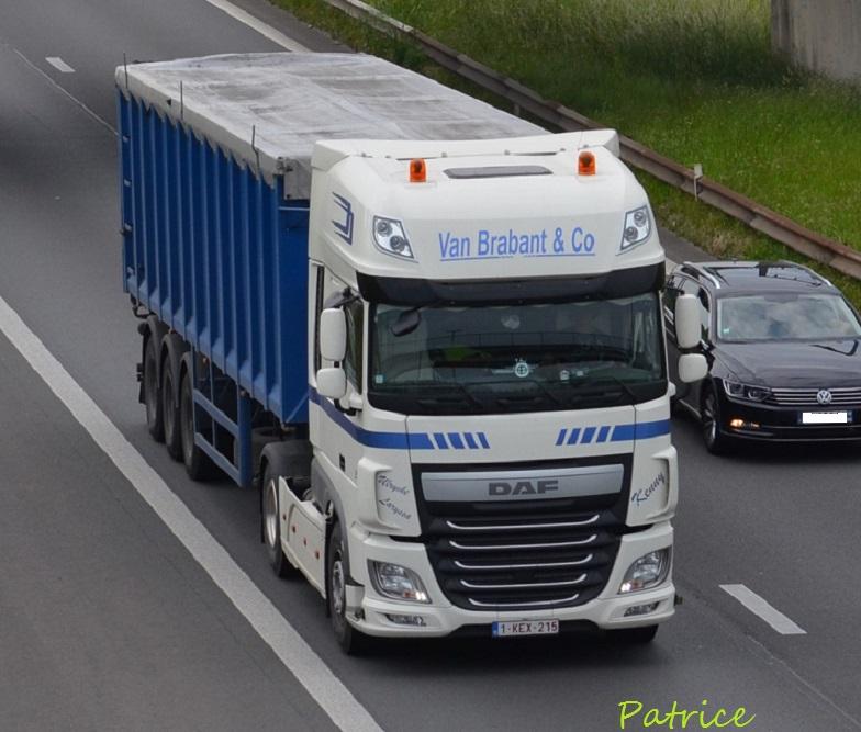 Van Brabant (Rumbeke) 8811
