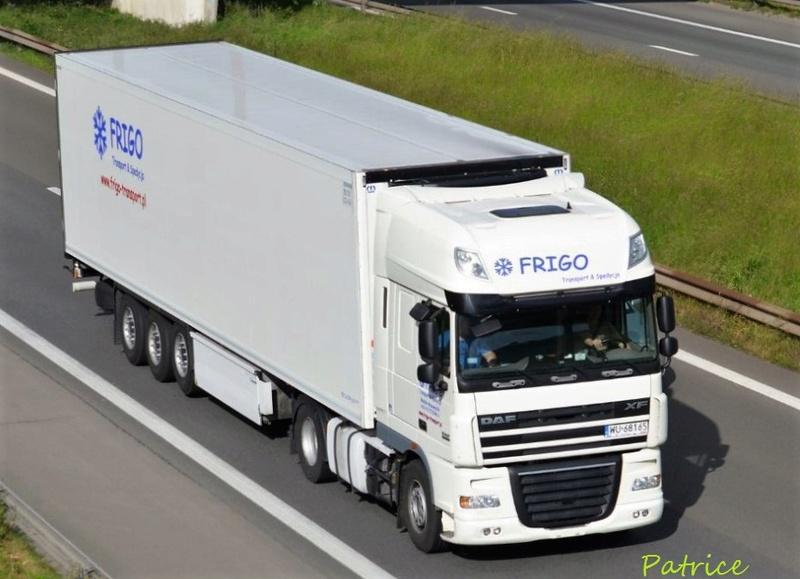 Frigo Transport & Spedycja  (Makow Mazowiecki) Frigo_10