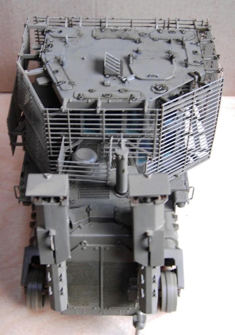 D9R with Slat Armor - 1:35 von Meng - Seite 3 Pict5520