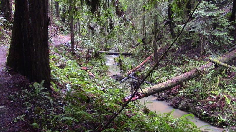 Russian Gulch Water Fall Img_0816
