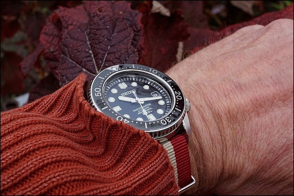 Votre montre du jour - Page 31 Rtdsc026