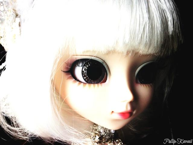 My Pullip Family ♥ Img_1112