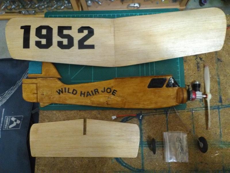 Wild Hair JOE (Ken Willard) Pee wee powered  - Page 2 Img_2031