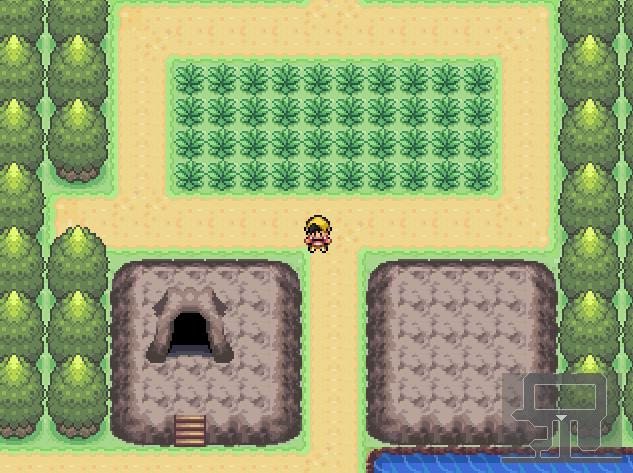 Pokémon Vert d'Automne et Pokémon Rouge d'été  Captur13