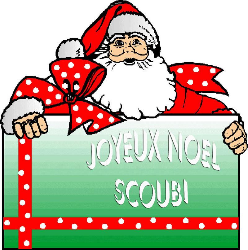 SCOUBIDOU - ONC Poney né en 1984 - protégé GPLV - DEC en janvier 2018 - Page 4 Noel11