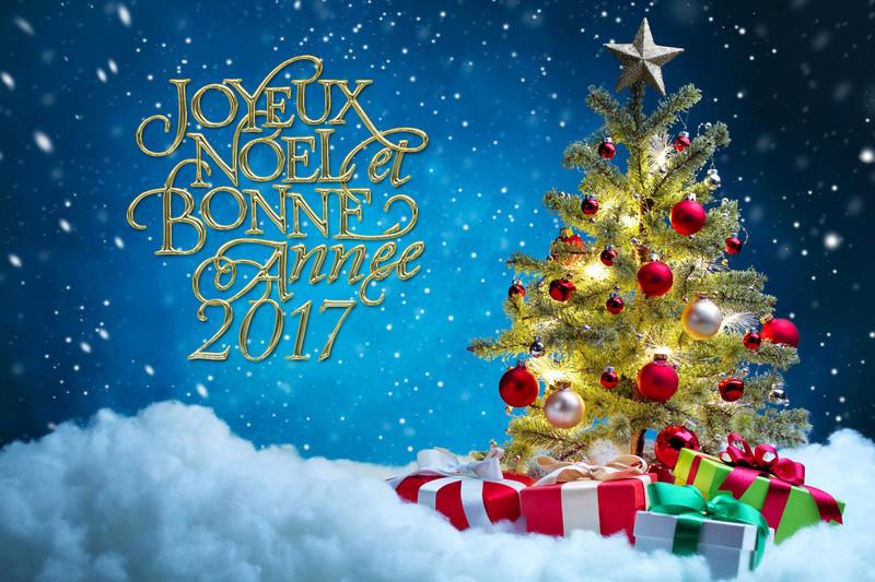 joyeuses fêtes Holida10