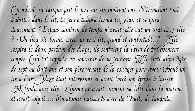 """Page FB """"Arcaëlle et autres - A.L Legran Ch_11_10"""