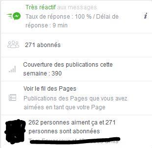 Facebook A.L Legrand - Arcaëlle et autres [Page Facebook Auteur] Stat10