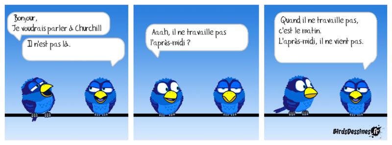 L'actu des Birds, début Novembre 14790410