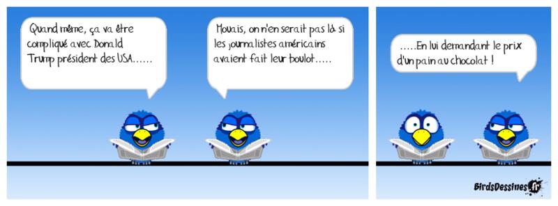 L'actu des Birds, début Novembre Gavera13