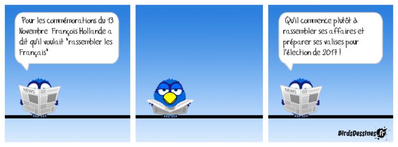 L'actu des Birds, début Novembre Muse_e10