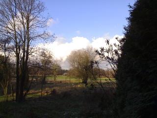 Die Wolken sprechen wieder mit mir 13012011