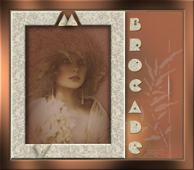 14-Cours Psp-Cadre brocade - Page 3 Brocad10