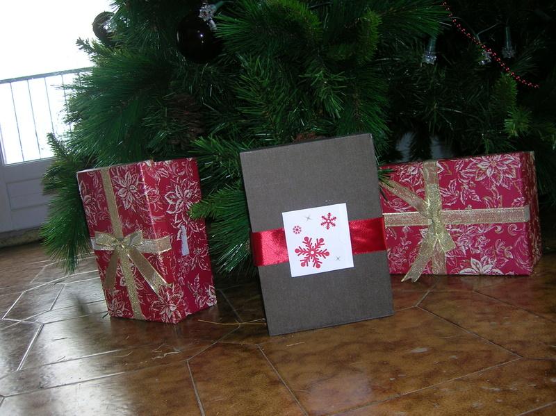 [Terminé] Un cadeau entre membres pour Noël 2016 ! - Page 2 Dscn6610