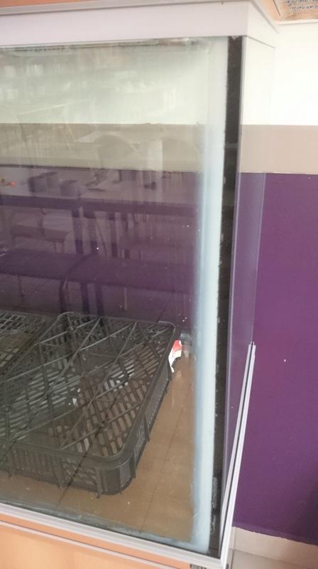 Un récifal jaubert à l'école de mes enfants. Dsc_0012