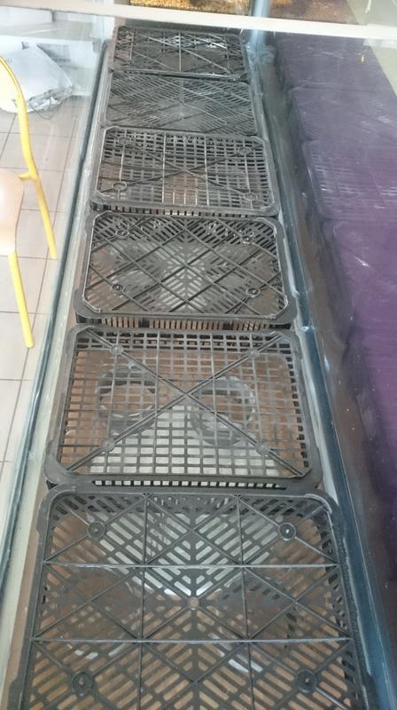 Un récifal jaubert à l'école de mes enfants. Dsc_0014