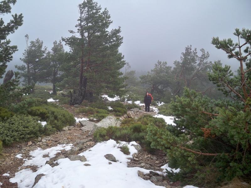 Senderismo invernal: sábado 3 de diciembre 2016 - Ascensión al Montón de Trigo 004_su10