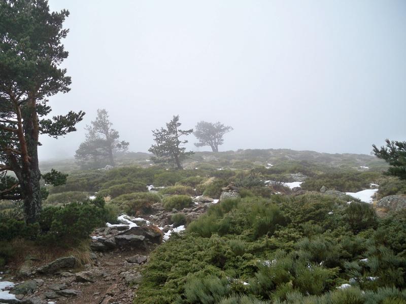 Senderismo invernal: sábado 3 de diciembre 2016 - Ascensión al Montón de Trigo 005_ce10