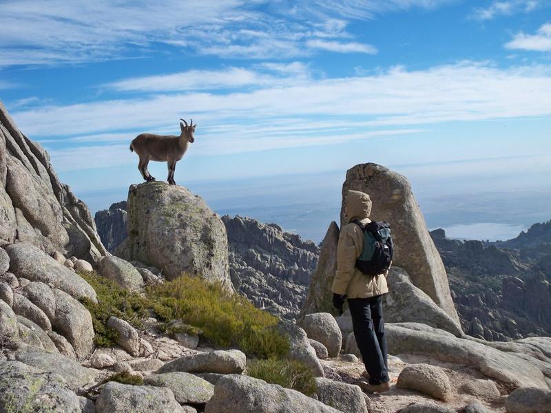 Montañismo: sábado 24 de diciembre 2016 - Torres de la Pedriza 46285710