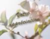 Votre appréciation