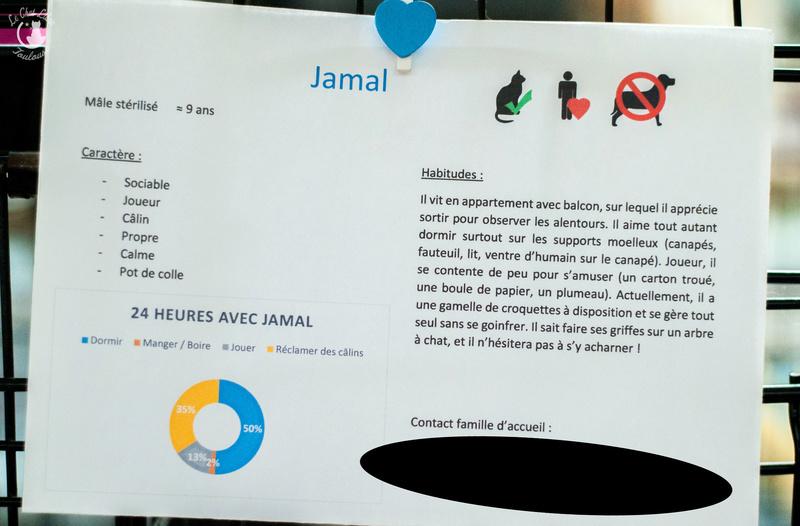 JAMAL FIV+ Jamal-18