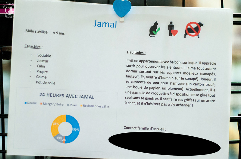 JAMAL FIV+ Jamal-21