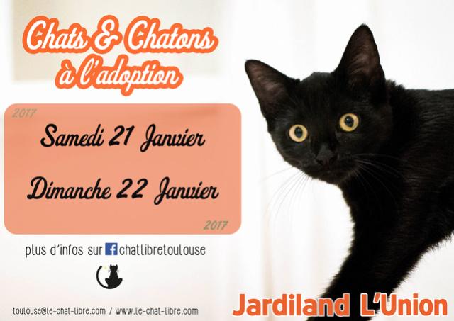 [ Adoptions ] Samedi 21 janvier 2017 :  Jardiland L'Union Jardil16