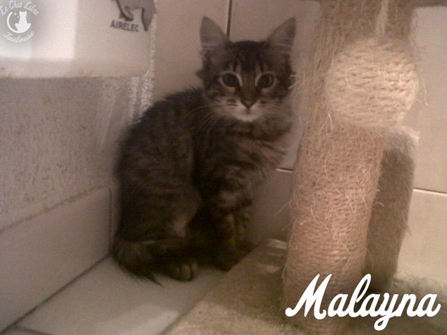 MAËL & MALAYNA Malayn10