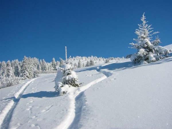 Entre Léman et Mont-Blanc 05012710