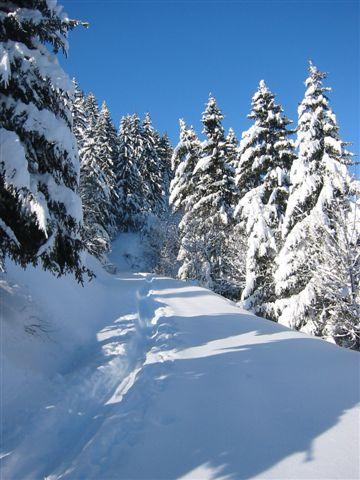 Entre Léman et Mont-Blanc 05012713