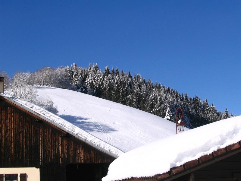 Entre Léman et Mont-Blanc Noel_c11