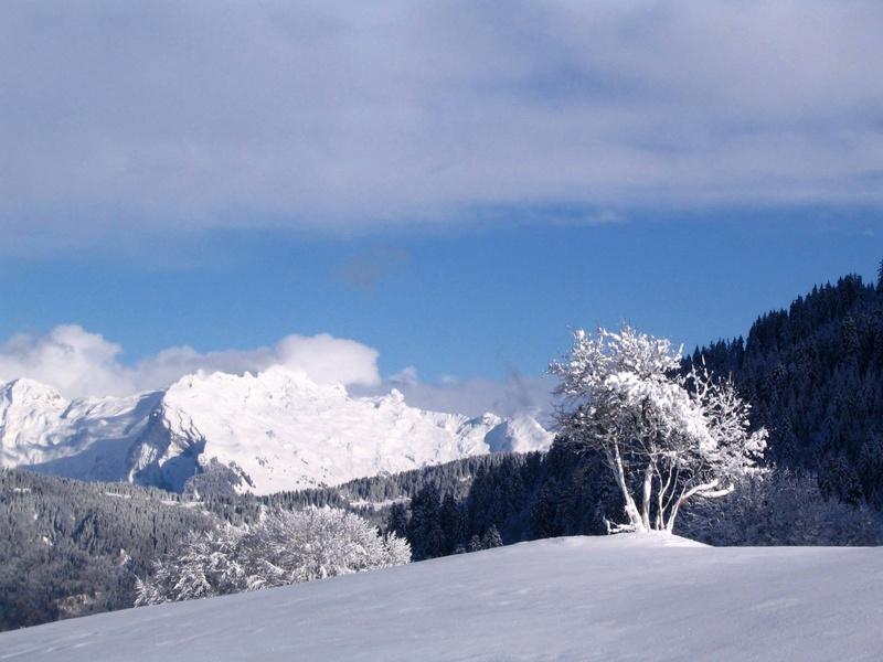 Entre Léman et Mont-Blanc Noel_c14