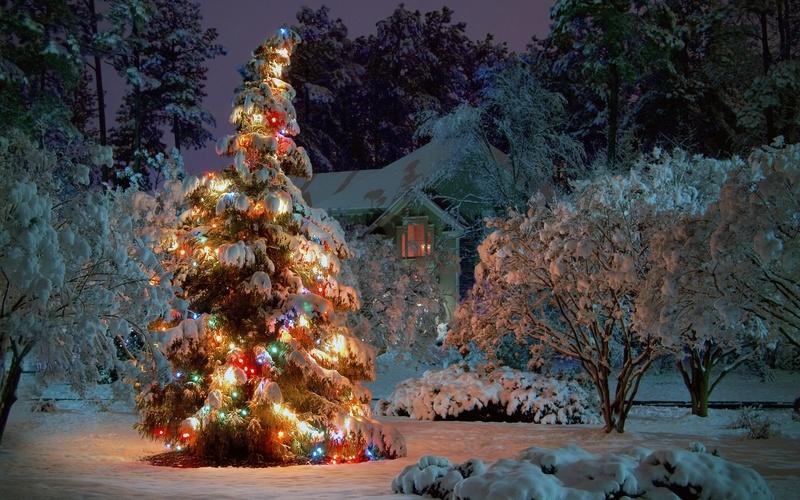 Les illuminations de Noël pour les fêtes 2.015   2.016 ! - Page 11 A_00021