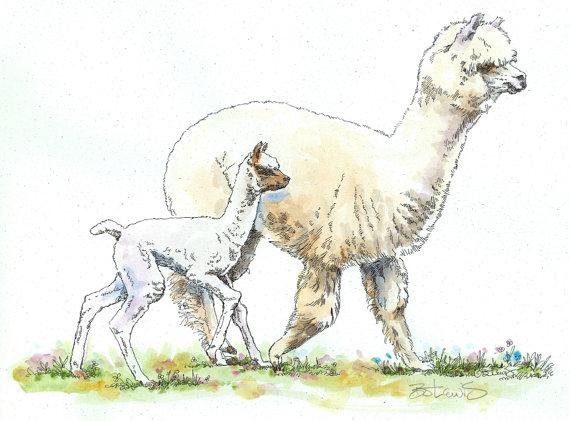 Les animaux peints à l'AQUARELLE - Page 4 Aq_al10
