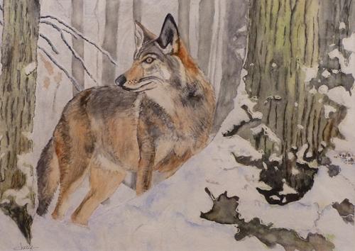 Les animaux peints à l'AQUARELLE Aq_b10