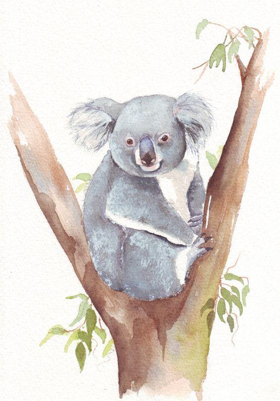Les animaux peints à l'AQUARELLE - Page 3 Aq_ip10