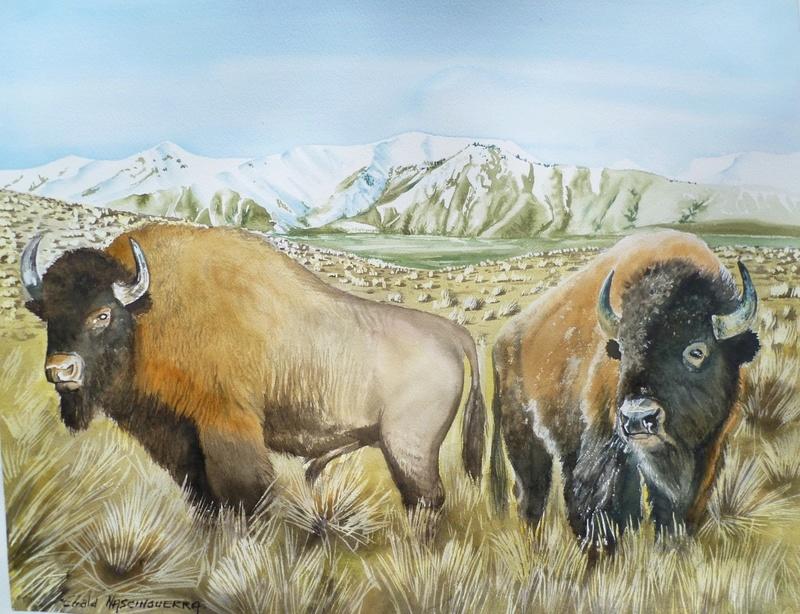 Les animaux peints à l'AQUARELLE - Page 3 Aq_m10