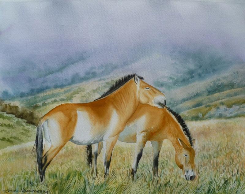 Les animaux peints à l'AQUARELLE Aq_o10