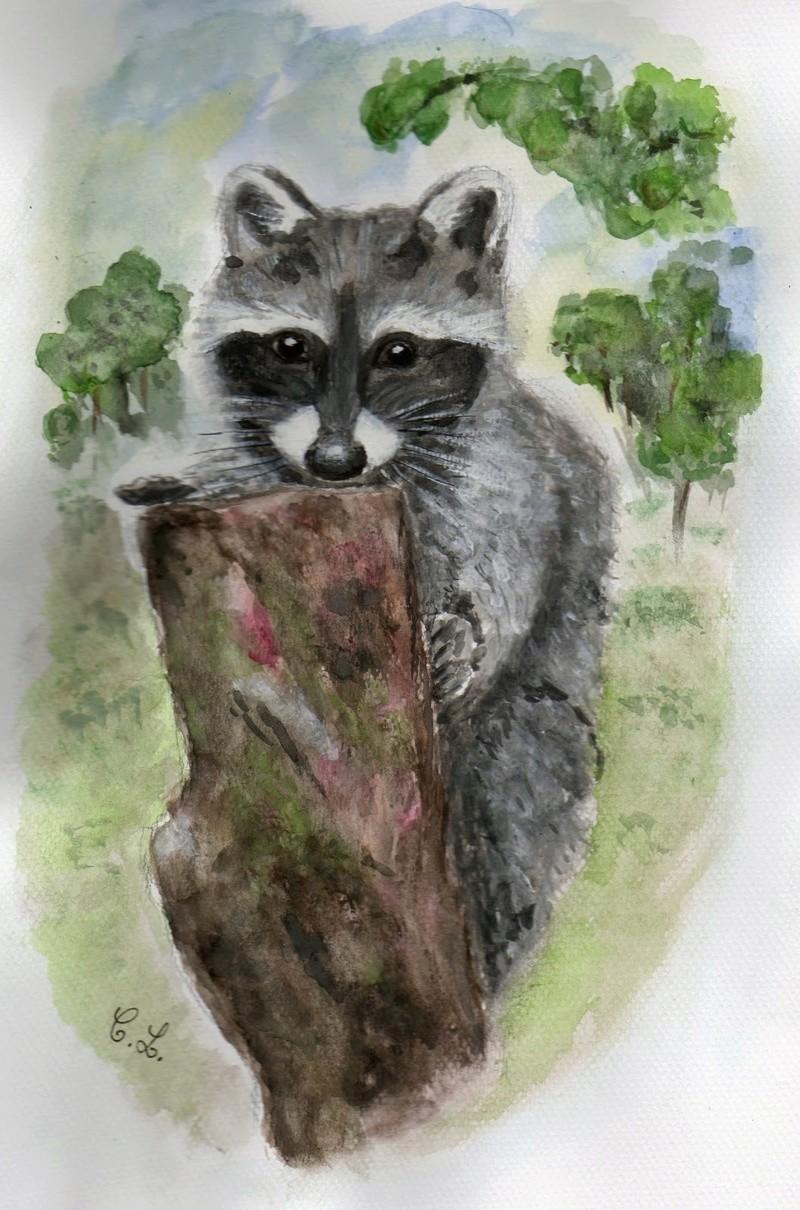 Les animaux peints à l'AQUARELLE - Page 3 Aq_pp10