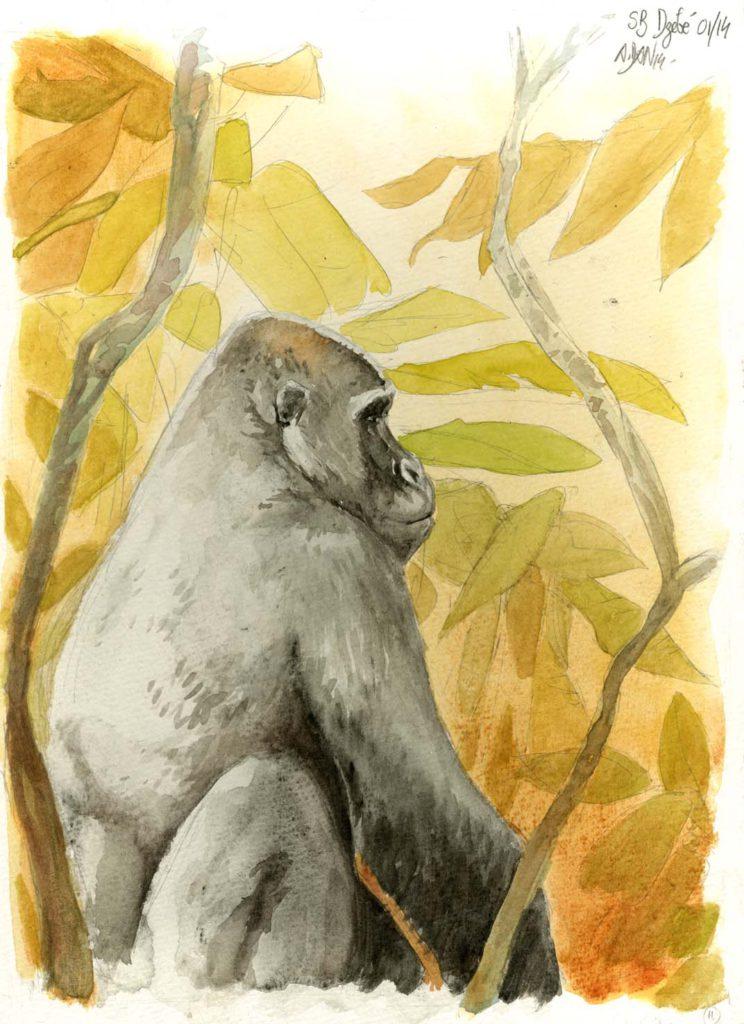 Les animaux peints à l'AQUARELLE - Page 2 Aq_t11