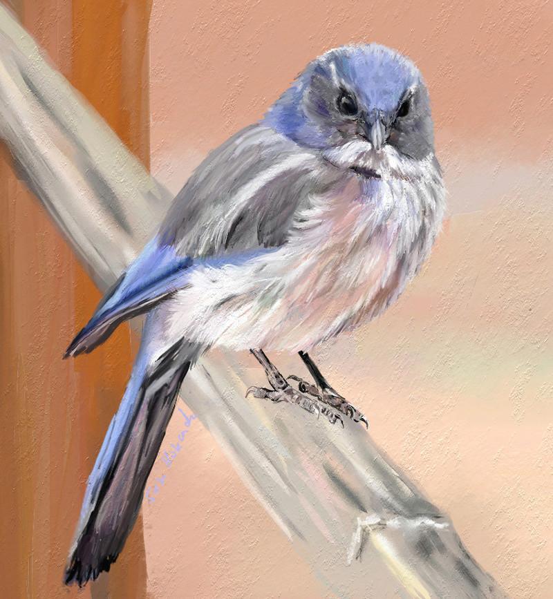 Les animaux peints à l'AQUARELLE - Page 4 Aq_xq10