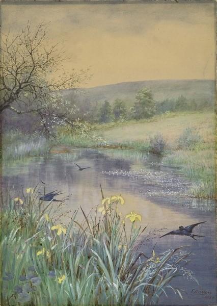 L'eau paisible des ruisseaux et petites rivières  - Page 6 Eau_qa10