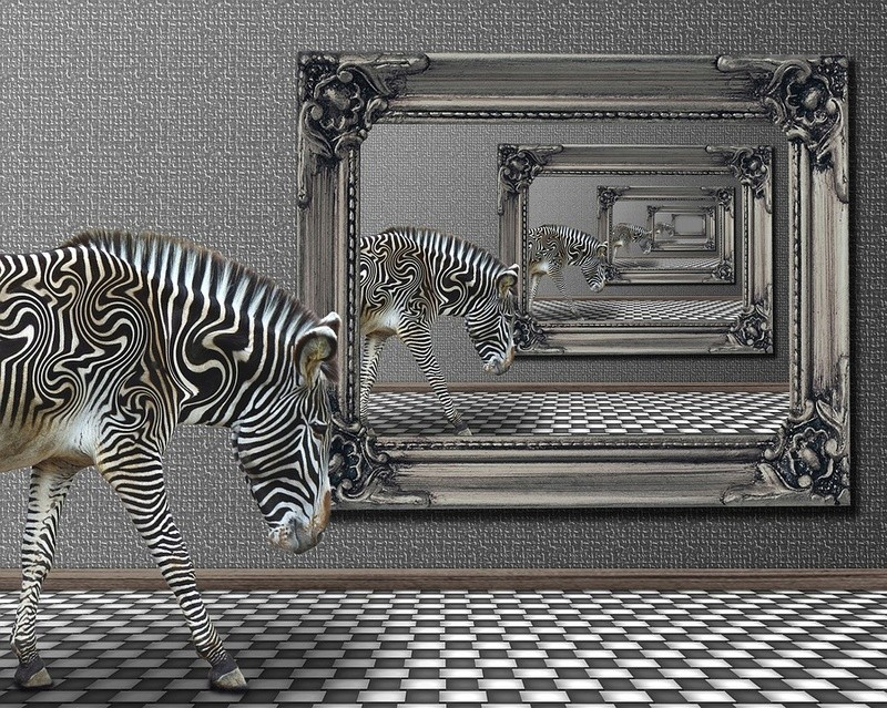 illusion - Page 3 Ill_f10
