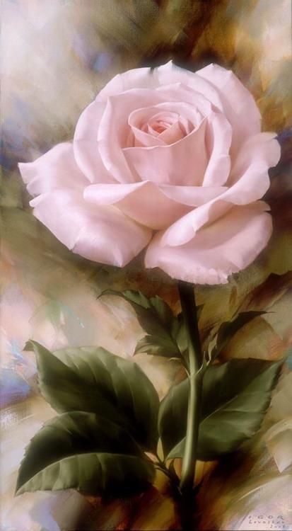 Le doux parfum des roses - Page 4 Ro_u10