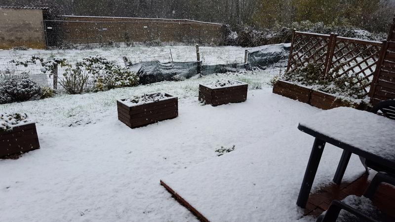 la neige arrive !!!  20161110