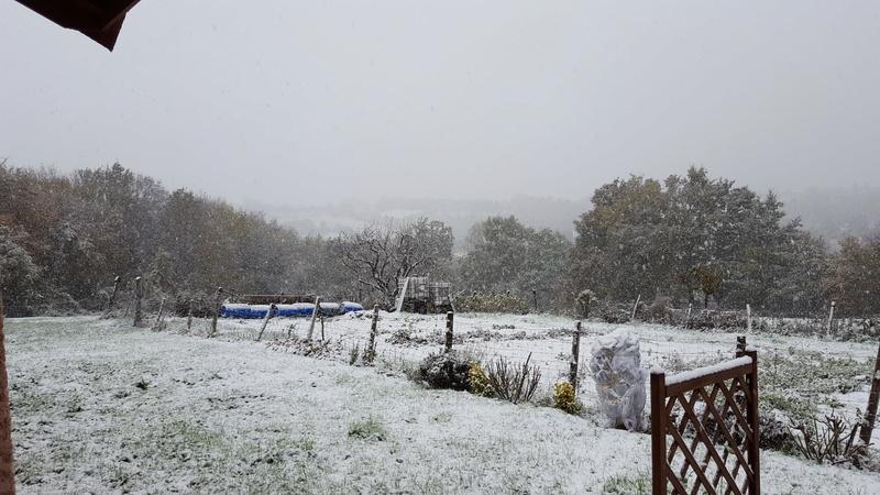 la neige arrive !!!  20161111